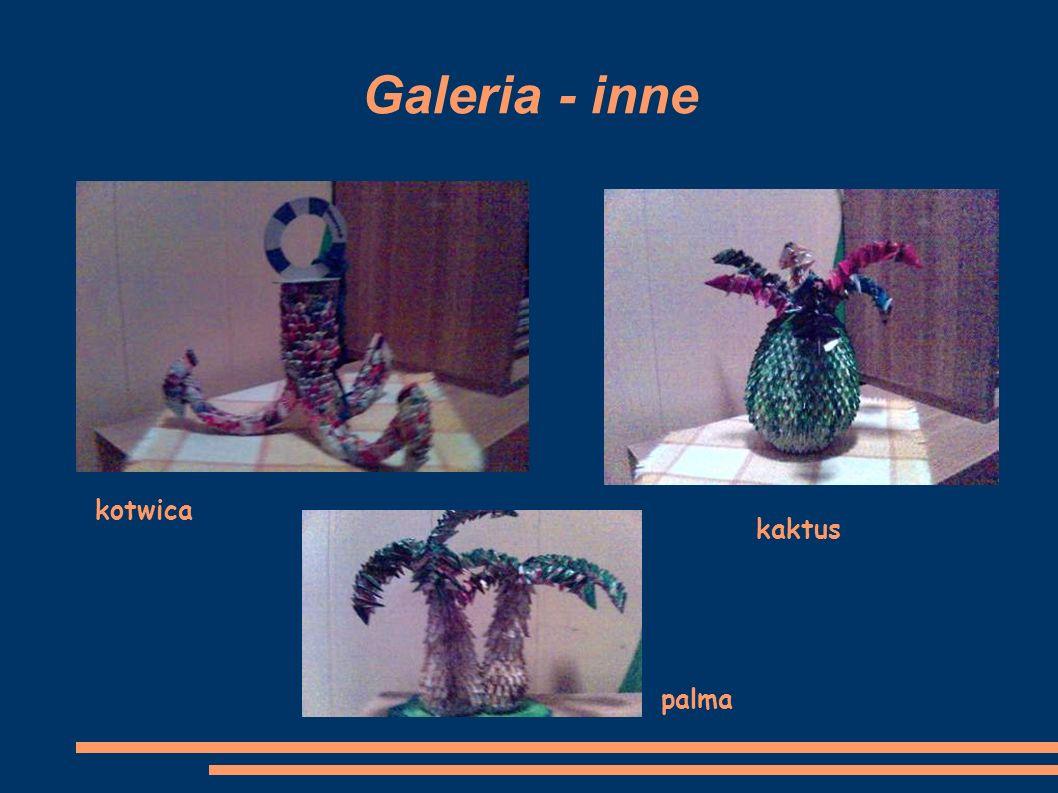 Galeria - inne kotwica kaktus palma