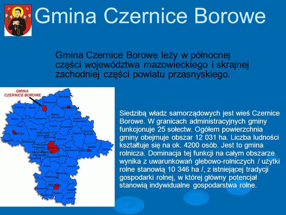 Gmina Czernice Borowe Gmina Czernice Borowe leży w północnej części województwa mazowieckiego i skrajnej zachodniej części powiatu przasnyskiego. Sied