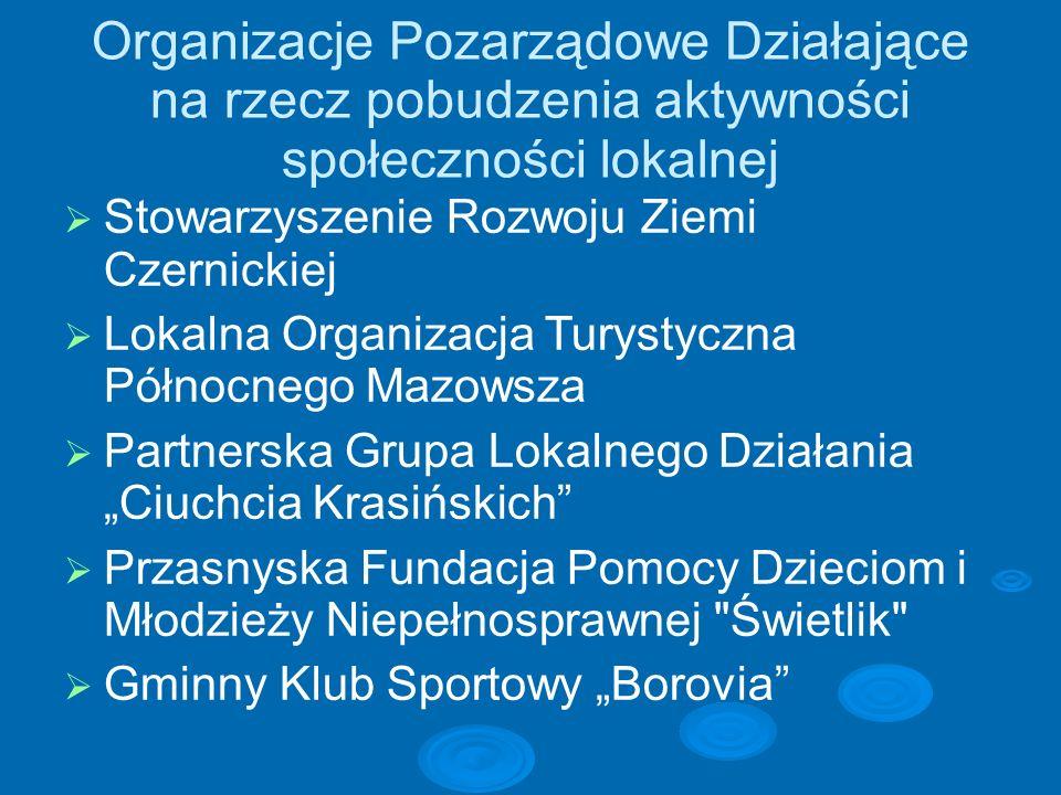 Stowarzyszenie Rozwoju Ziemi Czernickiej W październiku 2004 powstało z inicjatywy Wójta Gminy - Wojciecha Brzezińskiego Stowarzyszenie Rozwoju Ziemi Czernickiej.