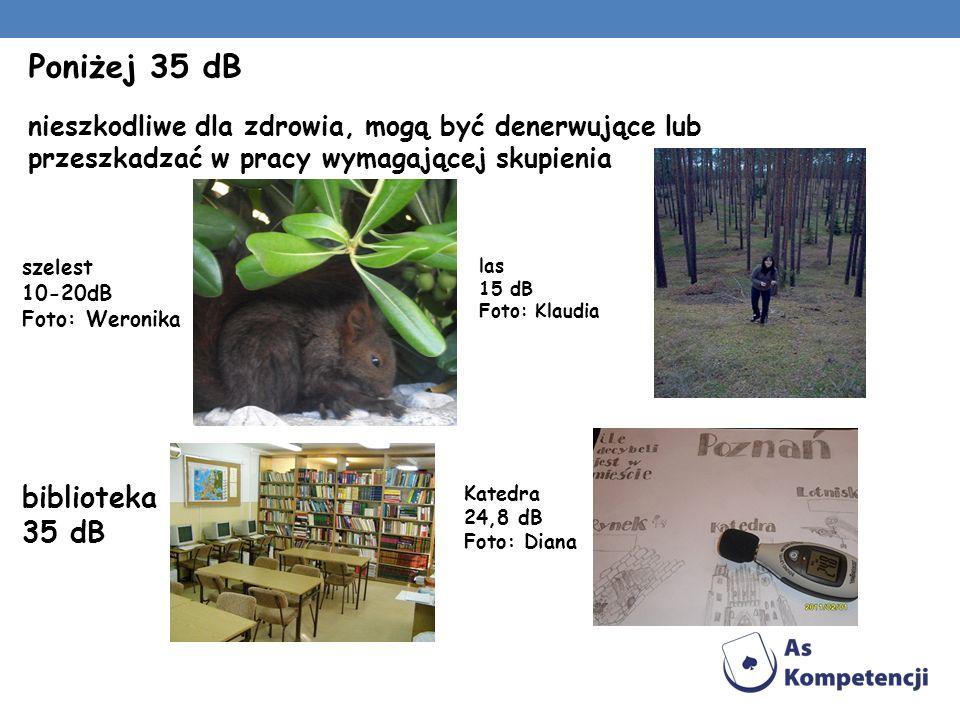 Poniżej 35 dB nieszkodliwe dla zdrowia, mogą być denerwujące lub przeszkadzać w pracy wymagającej skupienia szelest 10-20dB Foto: Weronika biblioteka