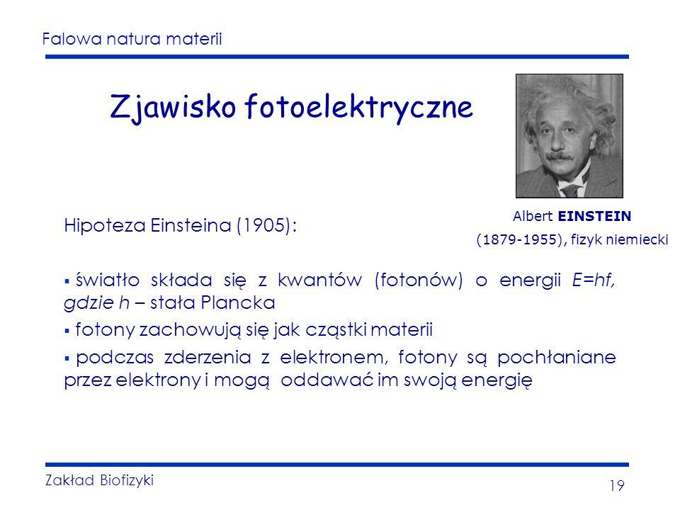 Falowa natura materii Zakład Biofizyki 19 Zjawisko fotoelektryczne Hipoteza Einsteina (1905): światło składa się z kwantów (fotonów) o energii E=hf, gdzie h – stała Plancka fotony zachowują się jak cząstki materii podczas zderzenia z elektronem, fotony są pochłaniane przez elektrony i mogą oddawać im swoją energię Albert EINSTEIN (1879-1955), fizyk niemiecki