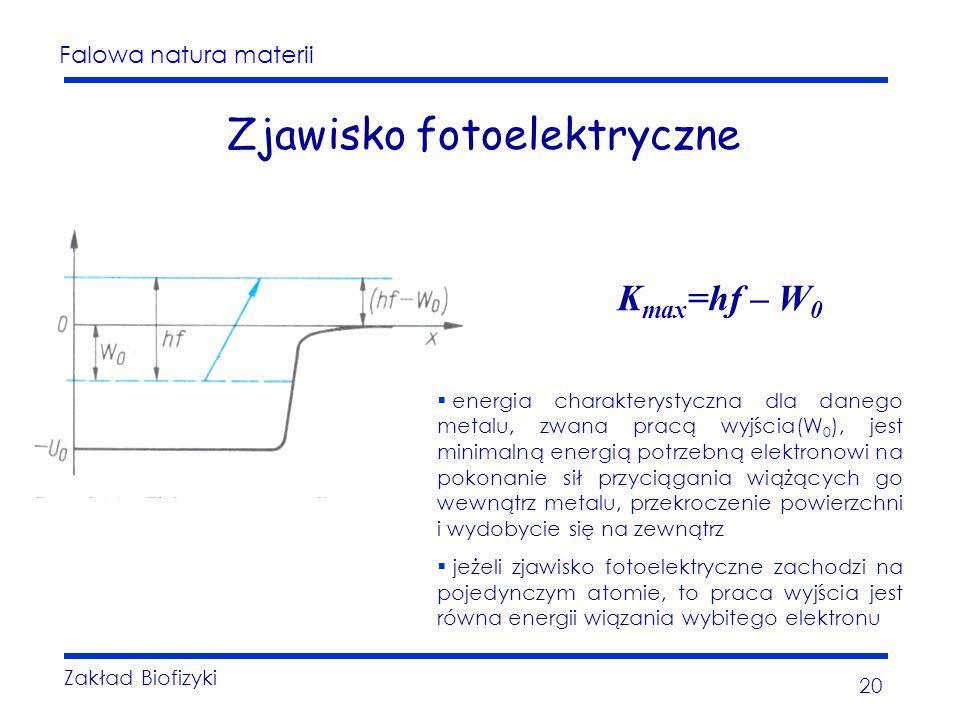 Falowa natura materii Zakład Biofizyki 20 Zjawisko fotoelektryczne energia charakterystyczna dla danego metalu, zwana pracą wyjścia(W 0 ), jest minimalną energią potrzebną elektronowi na pokonanie sił przyciągania wiążących go wewnątrz metalu, przekroczenie powierzchni i wydobycie się na zewnątrz jeżeli zjawisko fotoelektryczne zachodzi na pojedynczym atomie, to praca wyjścia jest równa energii wiązania wybitego elektronu K max =hf – W 0