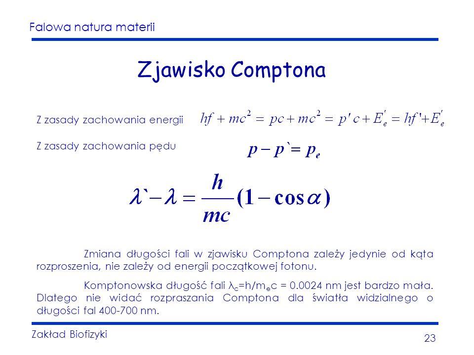 Falowa natura materii Zakład Biofizyki 23 Zjawisko Comptona Z zasady zachowania energii Z zasady zachowania pędu Zmiana długości fali w zjawisku Comptona zależy jedynie od kąta rozproszenia, nie zależy od energii początkowej fotonu.