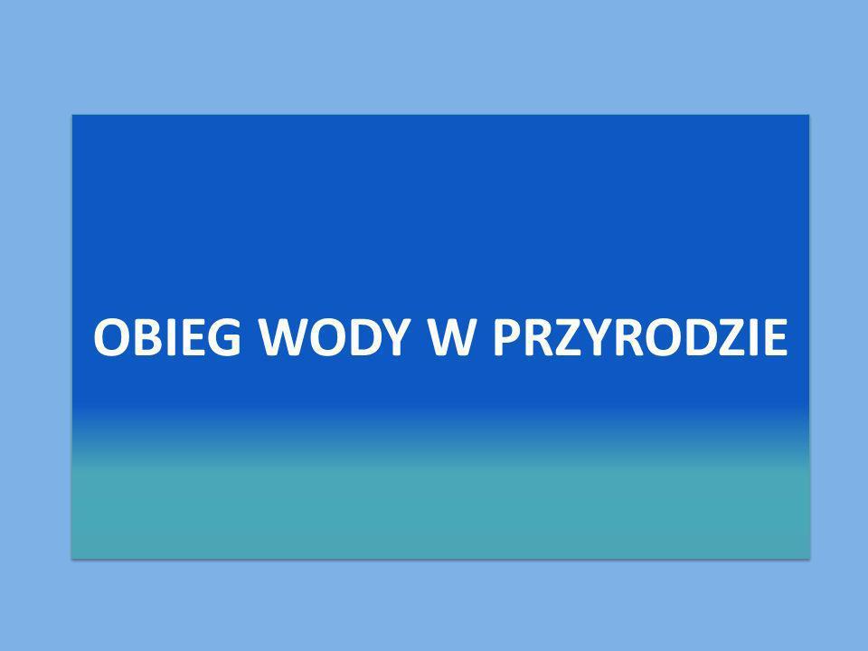 Informacje zaczerpnięte z google.pl Prezentacje przygotowała Michalina Grześkowiak kl. III b.