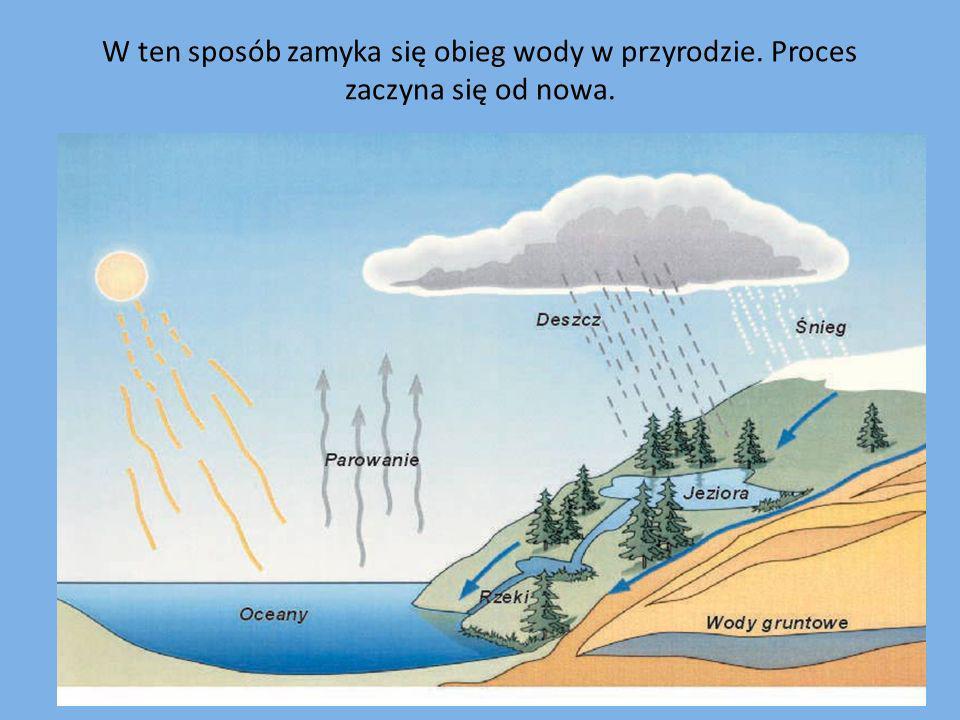 W ten sposób zamyka się obieg wody w przyrodzie. Proces zaczyna się od nowa.