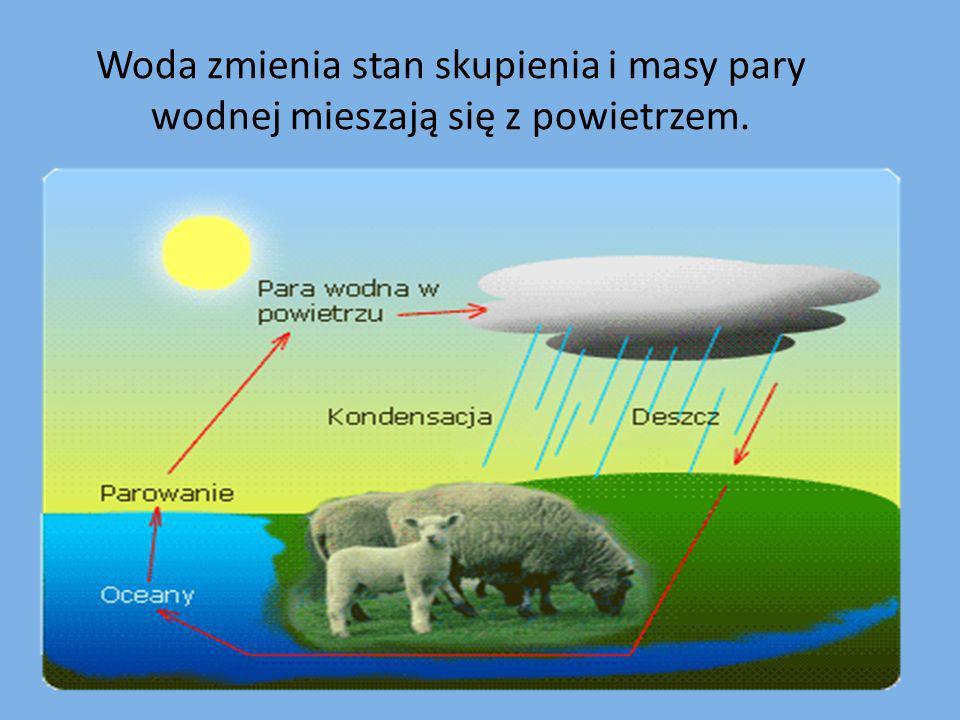 Woda zmienia stan skupienia i masy pary wodnej mieszają się z powietrzem.
