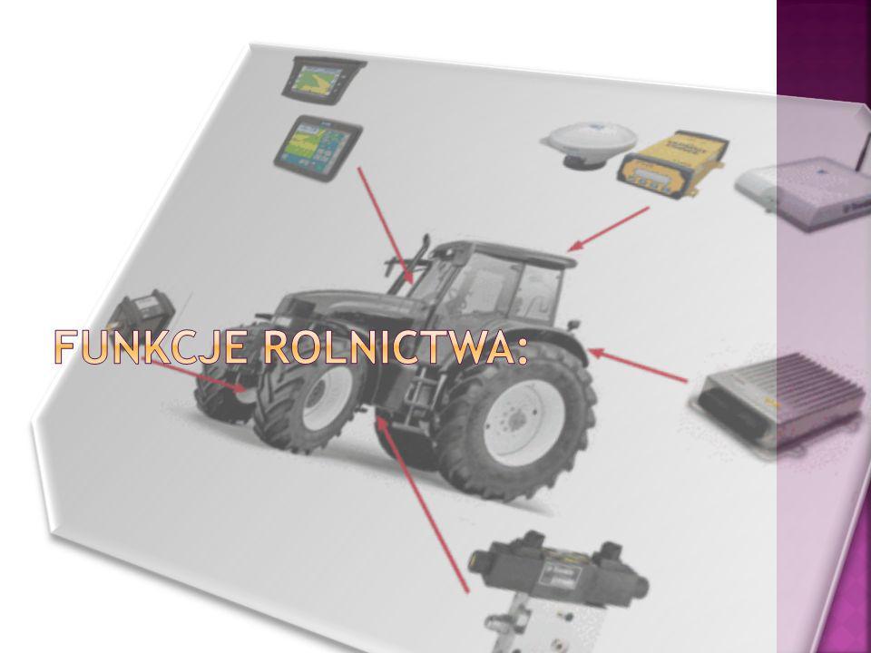 Gospodarka rolna pełni trzy funkcje: ekonomiczne (polegają na produkcji żywności i pasz, wytwarzaniu surowców dla przemysłu przetwórczego, udział w tworzeniu Produktu Krajowego Brutto), społeczne (polegają na zapewnianiu społeczeństwu miejsc pracy), przestrzenne (polegają na przekształcaniu krajobrazu naturalnego w rolniczy),