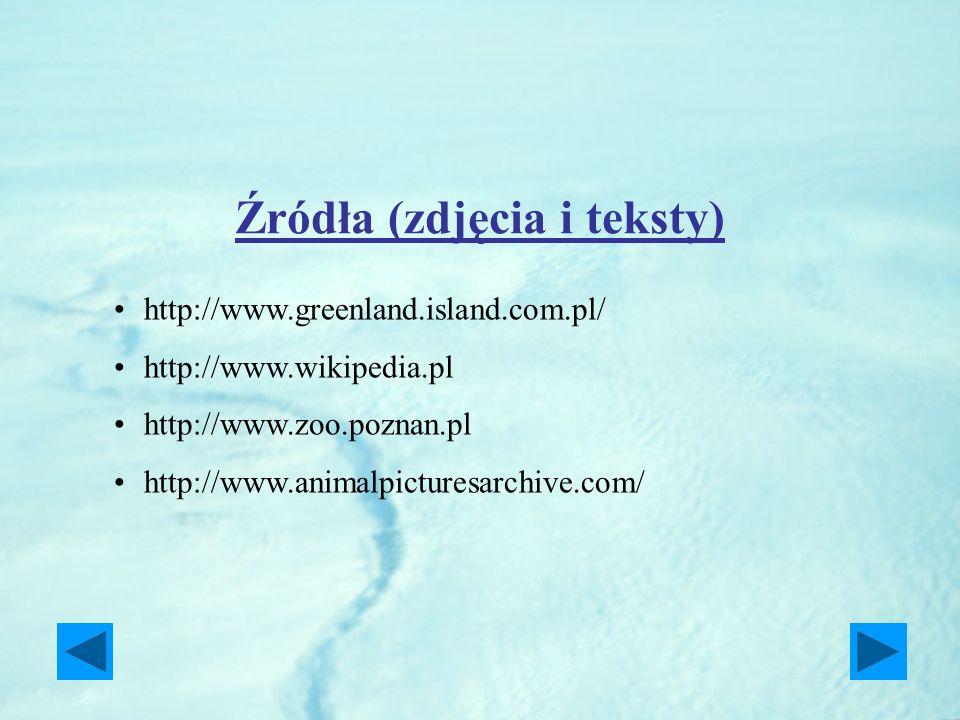 Źródła (zdjęcia i teksty) http://www.greenland.island.com.pl/ http://www.wikipedia.pl http://www.zoo.poznan.pl http://www.animalpicturesarchive.com/
