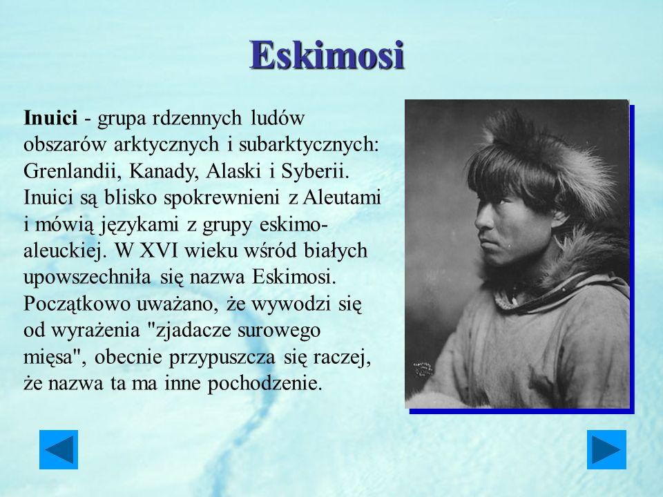 Eskimosi Inuici - grupa rdzennych ludów obszarów arktycznych i subarktycznych: Grenlandii, Kanady, Alaski i Syberii. Inuici są blisko spokrewnieni z A