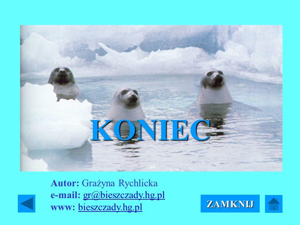 KONIEC ZAMKNIJ Autor: Grażyna Rychlicka e-mail: gr@bieszczady.hg.pl www: bieszczady.hg.plgr@bieszczady.hg.plbieszczady.hg.pl