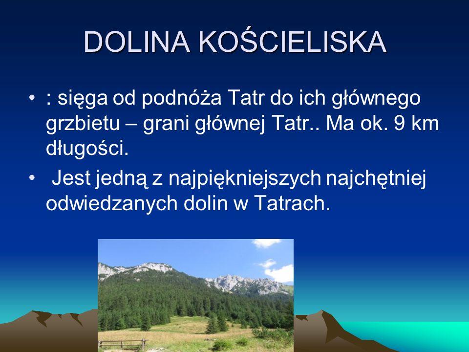 DOLINA KOŚCIELISKA : sięga od podnóża Tatr do ich głównego grzbietu – grani głównej Tatr.. Ma ok. 9 km długości. Jest jedną z najpiękniejszych najchęt