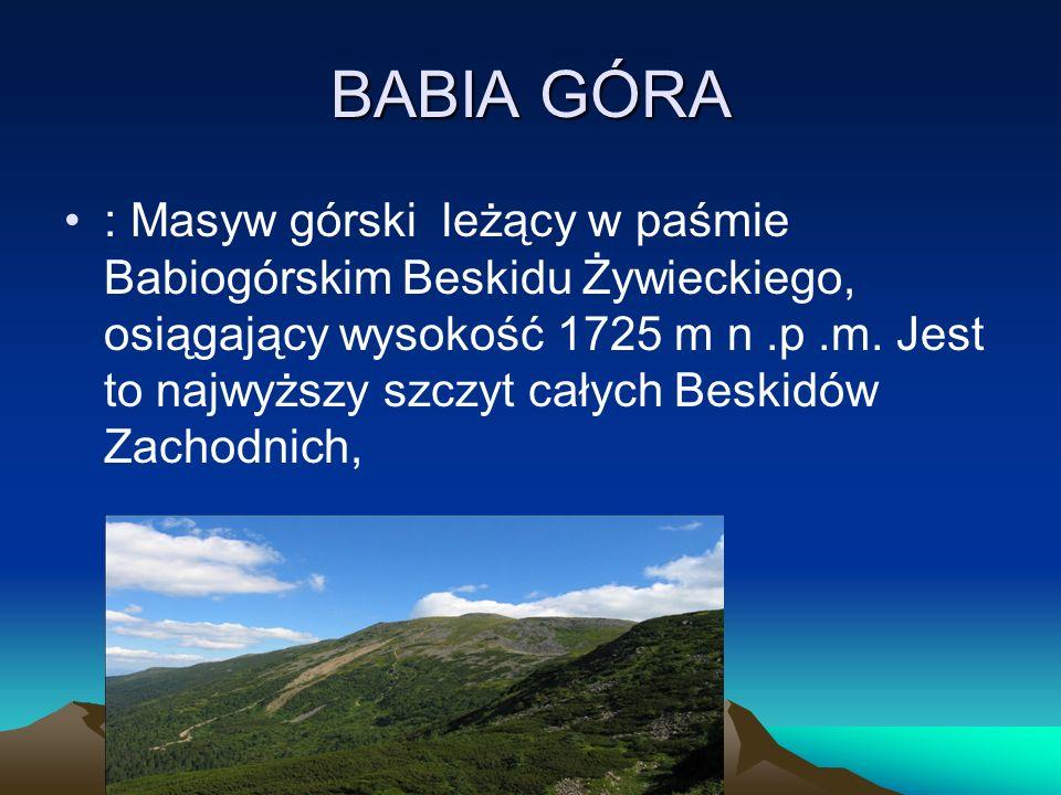 BABIA GÓRA : Masyw górski leżący w paśmie Babiogórskim Beskidu Żywieckiego, osiągający wysokość 1725 m n.p.m. Jest to najwyższy szczyt całych Beskidów