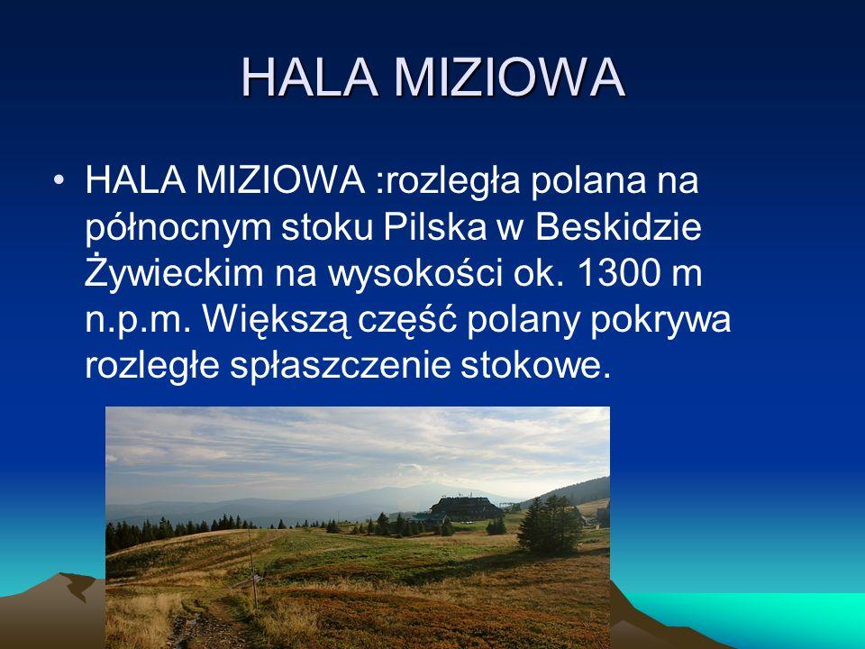 HALA MIZIOWA HALA MIZIOWA :rozległa polana na północnym stoku Pilska w Beskidzie Żywieckim na wysokości ok. 1300 m n.p.m. Większą część polany pokrywa