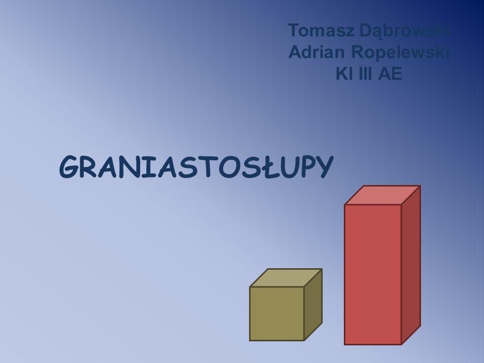 GRANIASTOSŁUPY Tomasz Dąbrowski Adrian Ropelewski Kl III AE