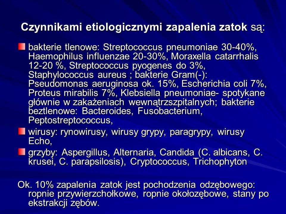 Czynnikami etiologicznymi zapalenia zatok są: bakterie tlenowe: Streptococcus pneumoniae 30-40%, Haemophilus influenzae 20-30%, Moraxella catarrhalis 12-20 %, Streptococcus pyogenes do 3%, Staphylococcus aureus ; bakterie Gram(-): Pseudomonas aeruginosa ok.