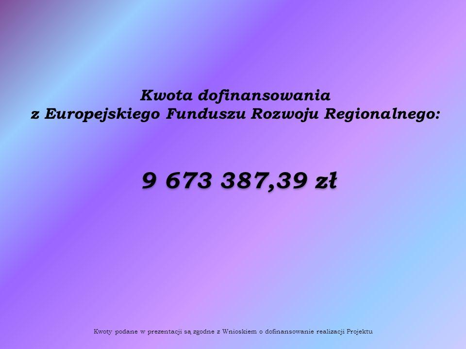 Kwota dofinansowania z Europejskiego Funduszu Rozwoju Regionalnego: 9 673 387,39 zł Kwoty podane w prezentacji są zgodne z Wnioskiem o dofinansowanie realizacji Projektu