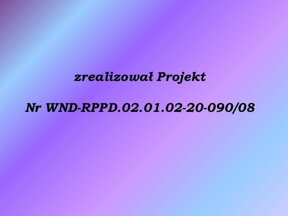 zrealizował Projekt Nr WND-RPPD.02.01.02-20-090/08