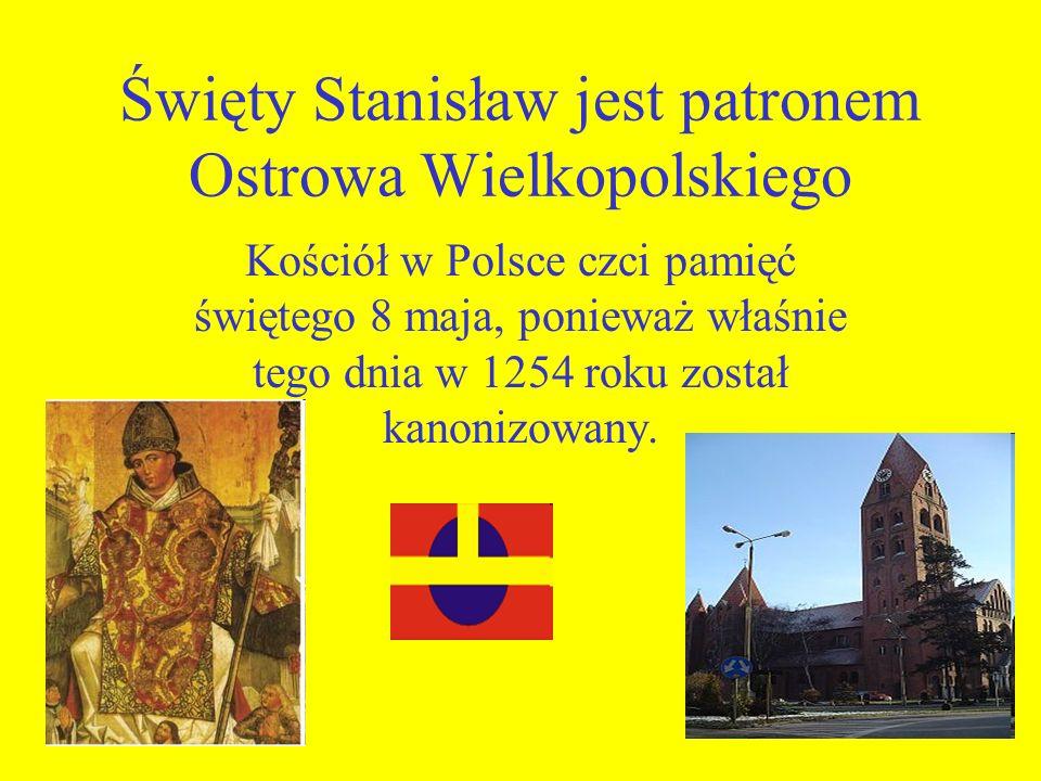 Święty Stanisław jest patronem Ostrowa Wielkopolskiego Kościół w Polsce czci pamięć świętego 8 maja, ponieważ właśnie tego dnia w 1254 roku został kan