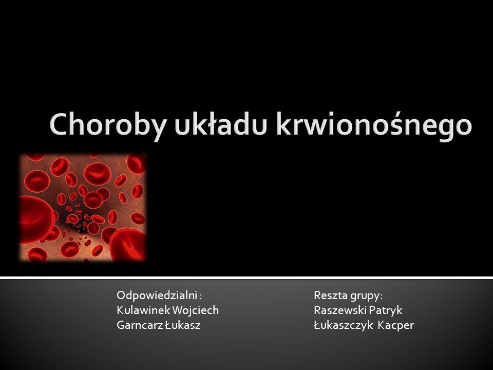 Odpowiedzialni : Reszta grupy: Kulawinek Wojciech Raszewski Patryk Garncarz Łukasz Łukaszczyk Kacper