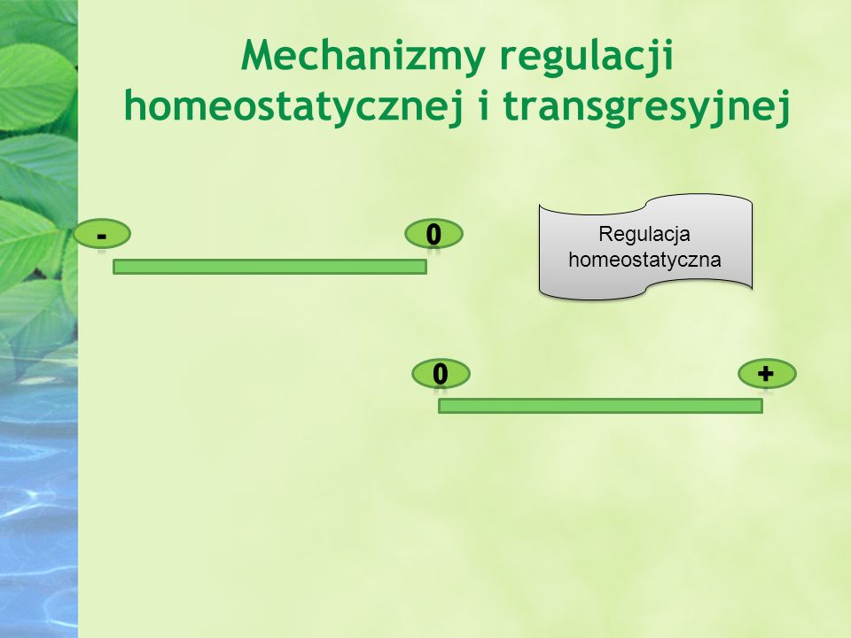 Regulacja homeostatyczna