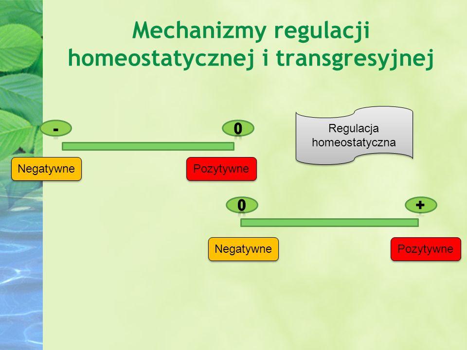 Mechanizmy regulacji homeostatycznej i transgresyjnej Negatywne Pozytywne Regulacja homeostatyczna