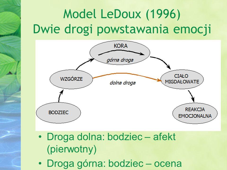 Model LeDoux (1996) Dwie drogi powstawania emocji Droga dolna: bodziec – afekt (pierwotny) Droga górna: bodziec – ocena poznawcza – afekt (wtórny)