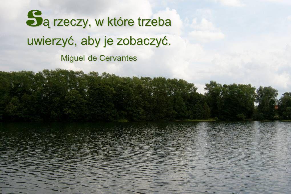 S ą rzeczy, w które trzeba uwierzyć, aby je zobaczyć. Miguel de Cervantes