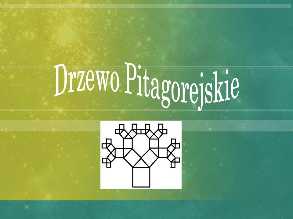 Drzewo Pitagorejskie Drzewo pitagorejskie to konstrukcja geometryczna, która składa się z trójkątów prostokątnych i kwadratów, zbudowanych na bokach t