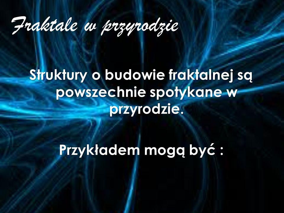 Historia fraktali Pojęcie fraktala zostało wprowadzone do matematyki przez francuskiego informatyka i matematyka polskiego pochodzenia Benoîta Mandelb
