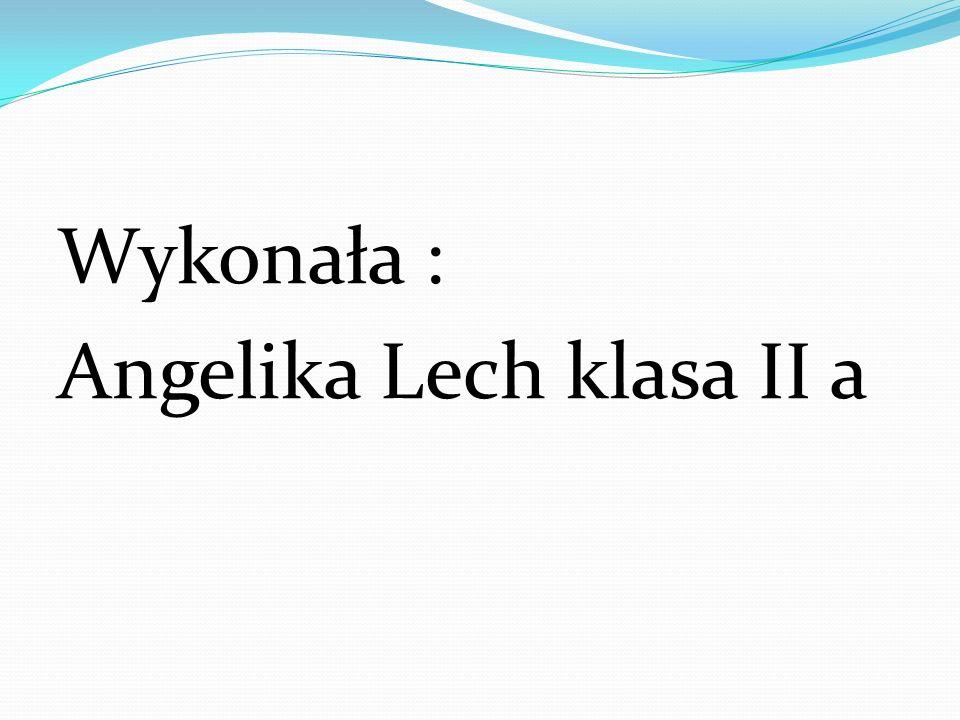 Wykonała : Angelika Lech klasa II a
