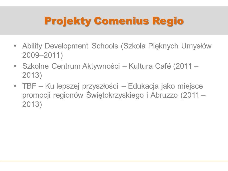 Projekty Comenius Regio Ability Development Schools (Szkoła Pięknych Umysłów 2009–2011) Szkolne Centrum Aktywności – Kultura Café (2011 – 2013) TBF – Ku lepszej przyszłości – Edukacja jako miejsce promocji regionów Świętokrzyskiego i Abruzzo (2011 – 2013)