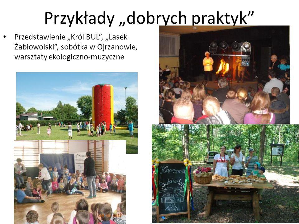 Przykłady dobrych praktyk Przedstawienie Król BUL, Lasek Żabiowolski, sobótka w Ojrzanowie, warsztaty ekologiczno-muzyczne