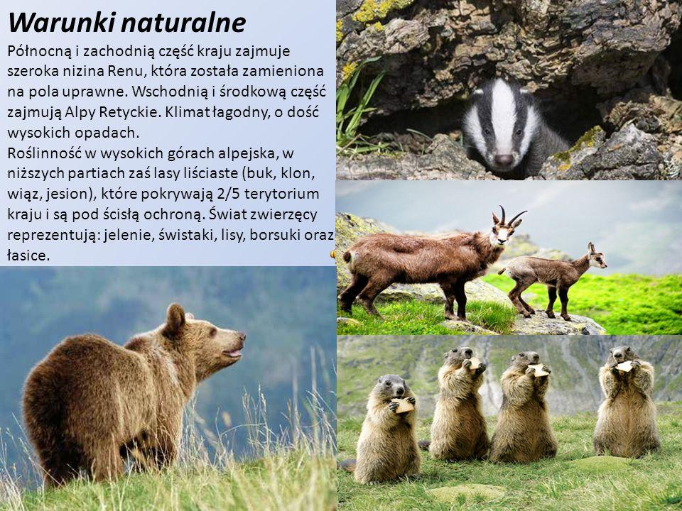 Warunki naturalne Północną i zachodnią część kraju zajmuje szeroka nizina Renu, która została zamieniona na pola uprawne. Wschodnią i środkową część z