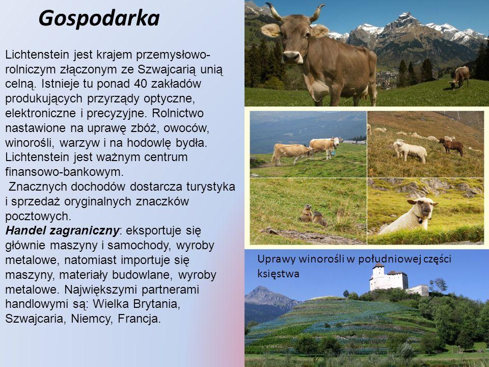 Gospodarka Lichtenstein jest krajem przemysłowo- rolniczym złączonym ze Szwajcarią unią celną. Istnieje tu ponad 40 zakładów produkujących przyrządy o