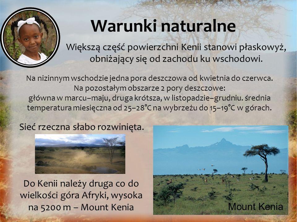 Warunki naturalne Mount Kenia Do Kenii należy druga co do wielkości góra Afryki, wysoka na 5200 m – Mount Kenia Większą część powierzchni Kenii stanow