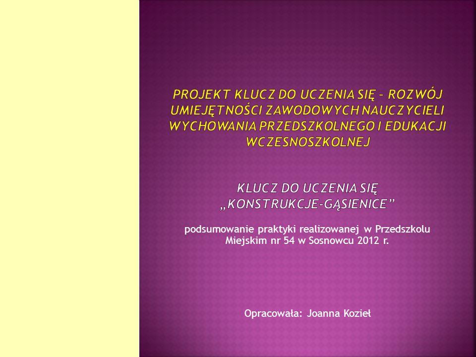 podsumowanie praktyki realizowanej w Przedszkolu Miejskim nr 54 w Sosnowcu 2012 r. Opracowała: Joanna Kozieł
