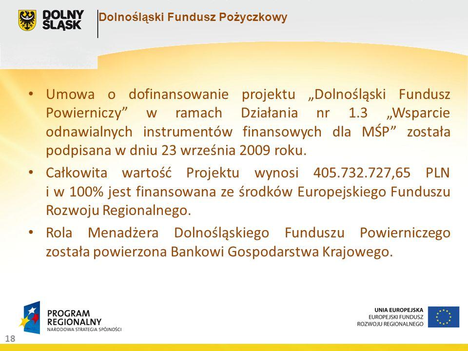 18 Dolnośląski Fundusz Pożyczkowy Umowa o dofinansowanie projektu Dolnośląski Fundusz Powierniczy w ramach Działania nr 1.3 Wsparcie odnawialnych instrumentów finansowych dla MŚP została podpisana w dniu 23 września 2009 roku.