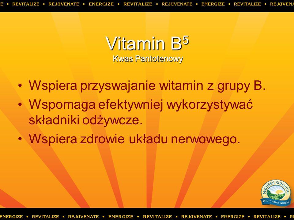 Vitamin B 5 Kwas Pantotenowy Wspiera przyswajanie witamin z grupy B. Wspomaga efektywniej wykorzystywać składniki odżywcze. Wspiera zdrowie układu ner