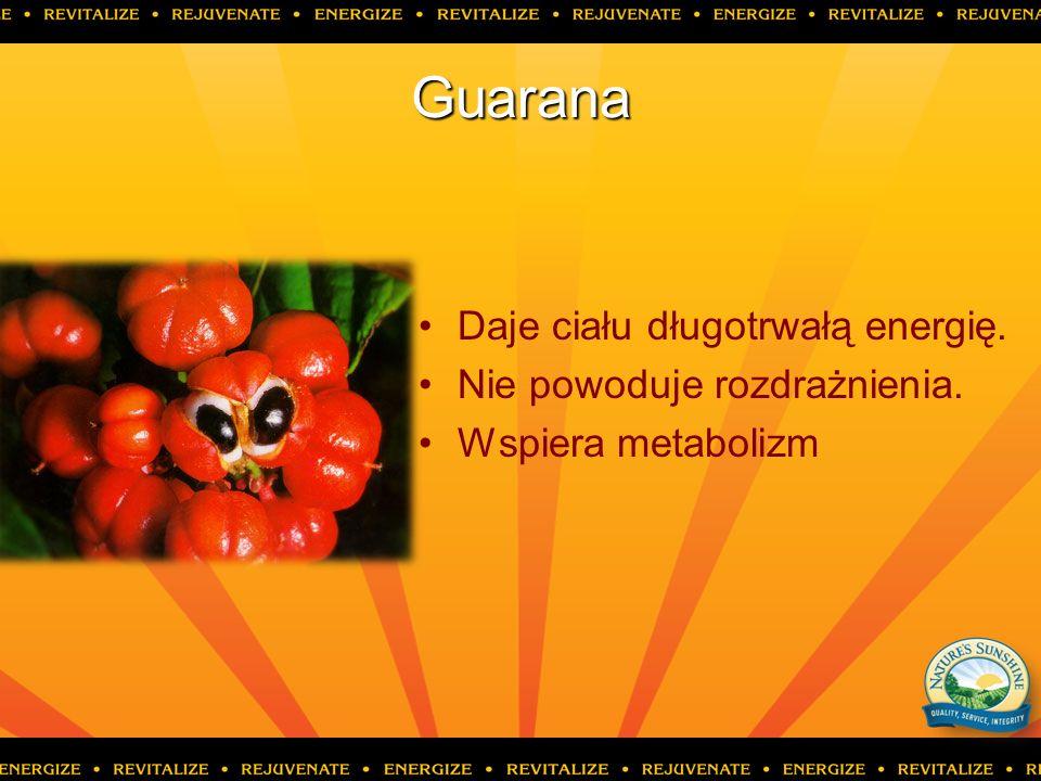 Guarana Daje ciału długotrwałą energię. Nie powoduje rozdrażnienia. Wspiera metabolizm