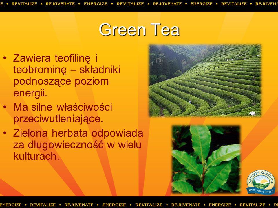 Green Tea Zawiera teofilinę i teobrominę – składniki podnoszące poziom energii. Ma silne właściwości przeciwutleniające. Zielona herbata odpowiada za
