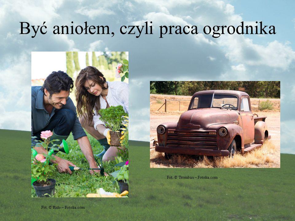 Być aniołem, czyli praca ogrodnika Fot. © Rido – Fotolia.com Fot. © Trombax – Fotolia.com