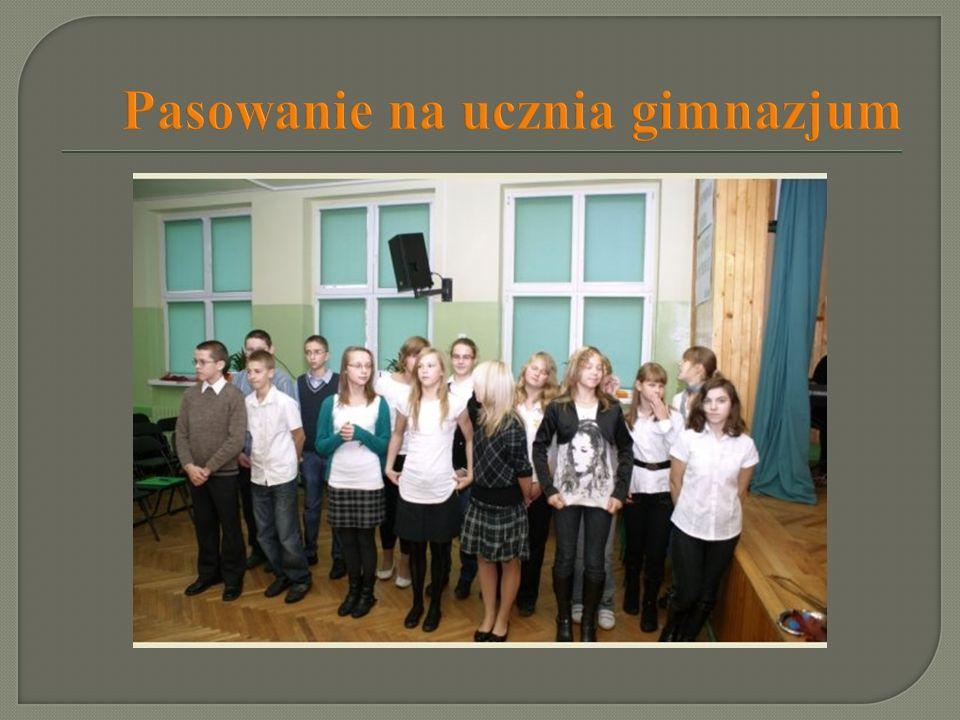 Projekty edukacyjne Klub Profesora Pimko -współpraca z Teatrem Polskim Spektakle: - Żmija - Krawiec - Przyjaciel - Panny z Wilka Projekt Bądźmy zdrowi –wiemy, więc działamy - Zasady postępowania: grypa AH1N1