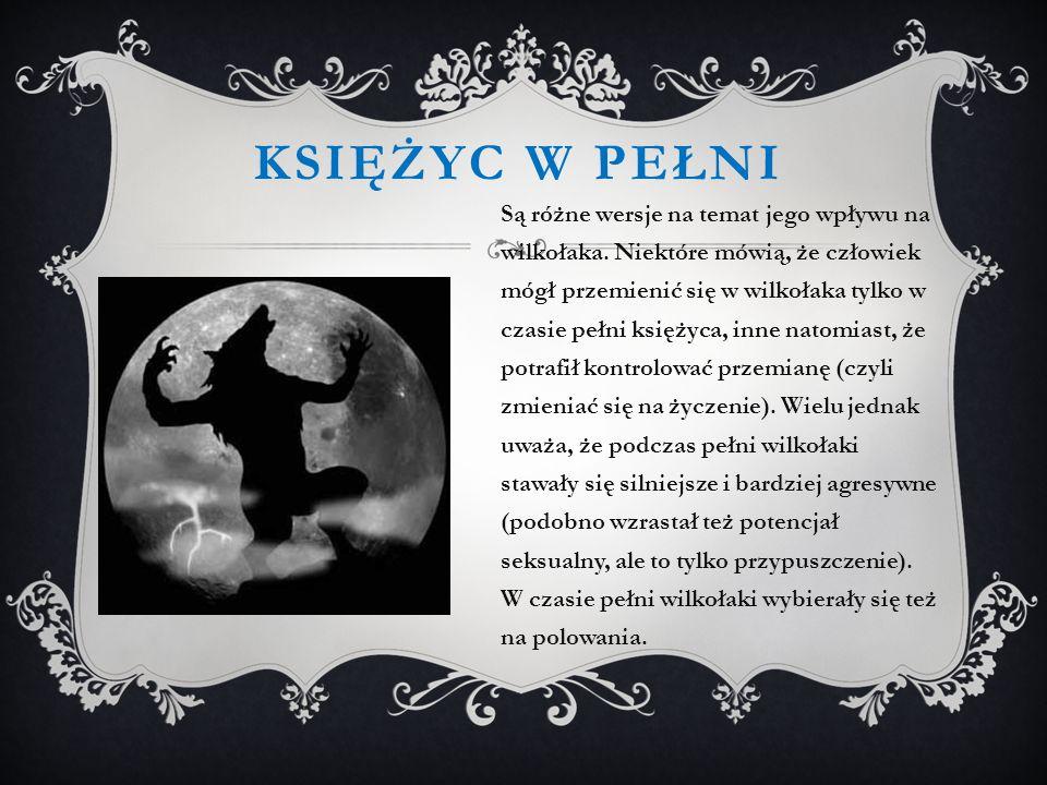 KSIĘŻYC W PEŁNI Są różne wersje na temat jego wpływu na wilkołaka.