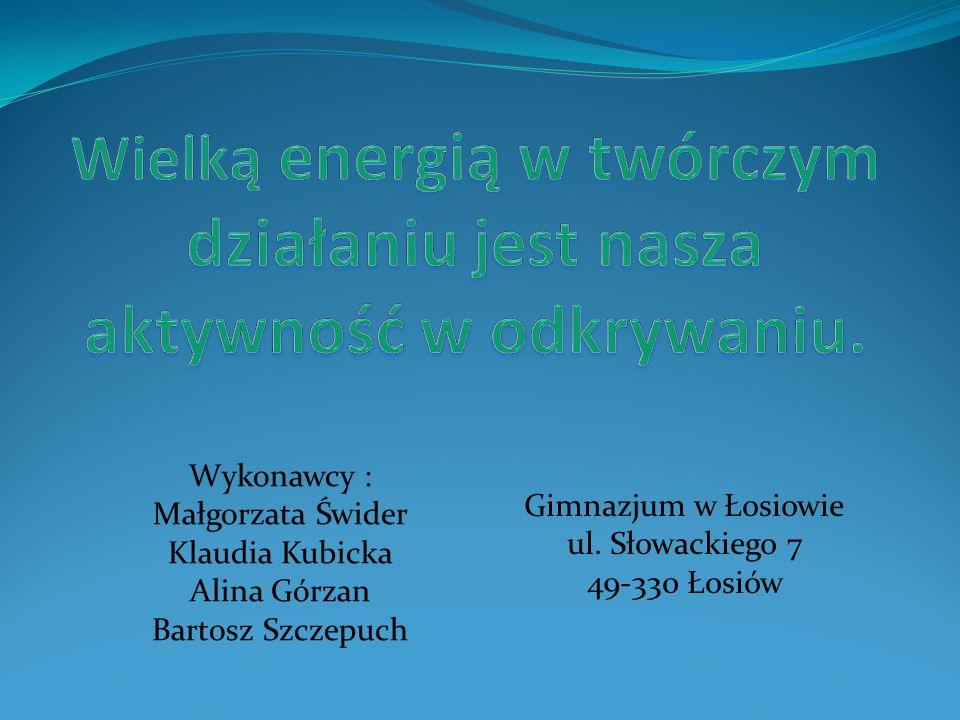 Wykonawcy : Małgorzata Świder Klaudia Kubicka Alina Górzan Bartosz Szczepuch Gimnazjum w Łosiowie ul. Słowackiego 7 49-330 Łosiów