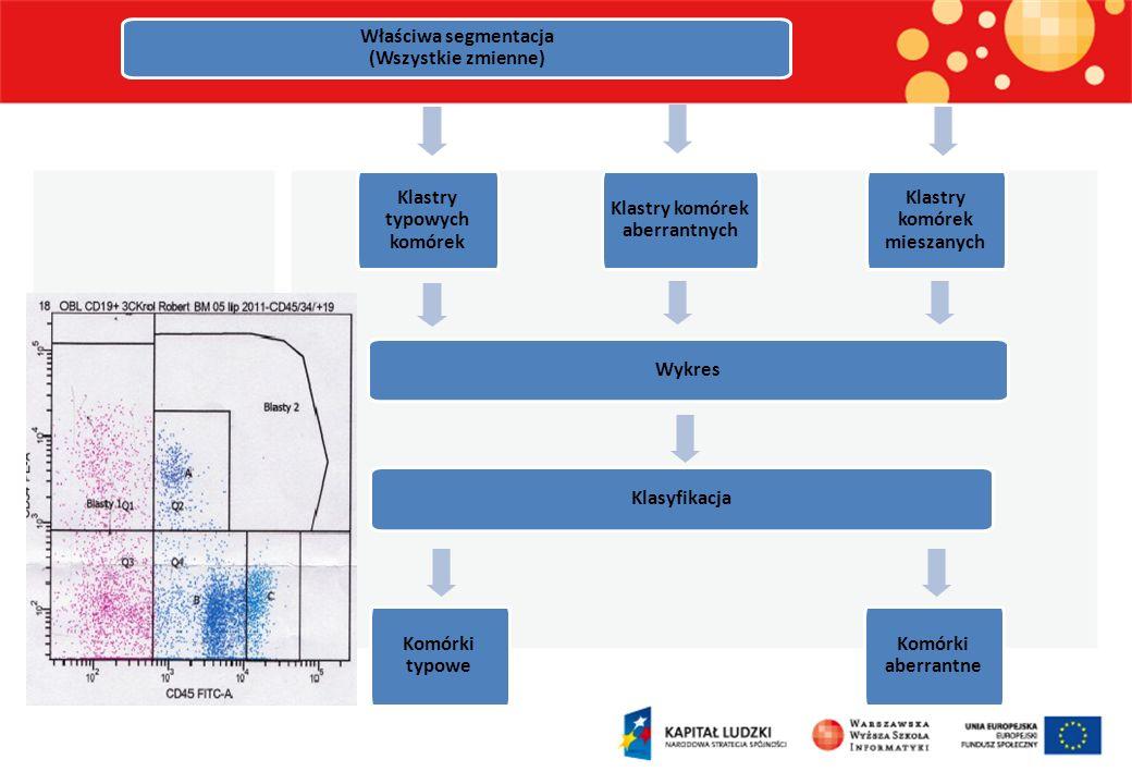 Dane pacjenta Eliminacja błędów FSCA < 250000 SSCA < 200000 Sprawdzenie przynależności do klastrów CD19+ lub CD19++ 65% Komórki CD19- Wykrycie nietypowych komórek 1% Komórki nietypowe 30% Sprawdzenie przynależności do głównych klastrów Klasyfikacja