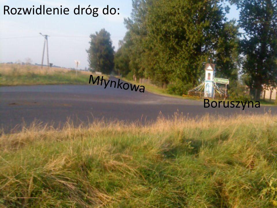 Boruszyna Rozwidlenie dróg do: Młynkowa