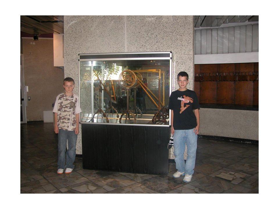 Tematem lekcji w olsztyńskim Muzeum Przyrody było życie ptaków naszego regionu.