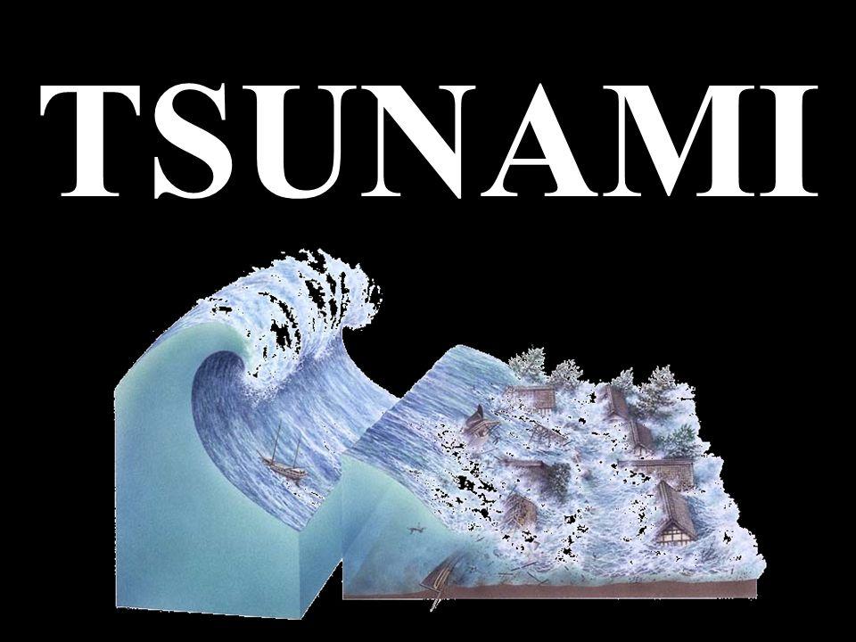 Jest to fala wywołana trzęsieniami ziemi lub wybuchami wulkanów na dnie oceanów.