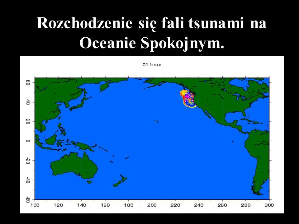 Czas rozchodzenia się fali tsunami na Oceanie Indyjskim w 2004 roku ( od 0 do 45 godz)