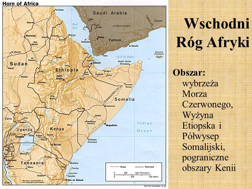 Obszar: wybrzeża Morza Czerwonego, Wyżyna Etiopska i Półwysep Somalijski, pograniczne obszary Kenii Wschodni Róg Afryki